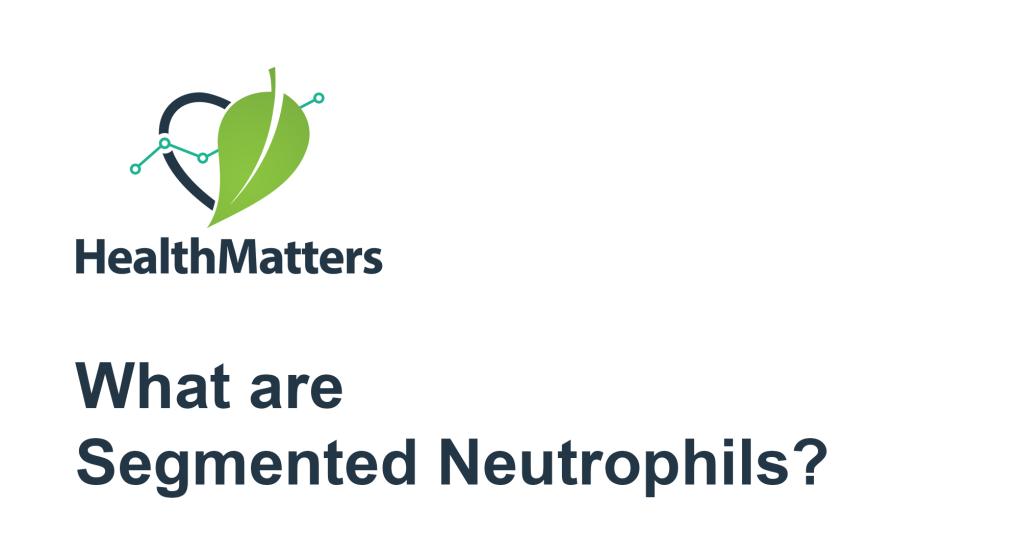 Segmented Neutrophils