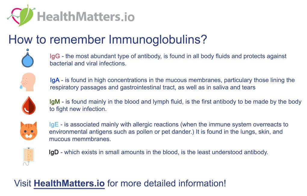 immunoglobulins antibody antibodies reference ranges low high value