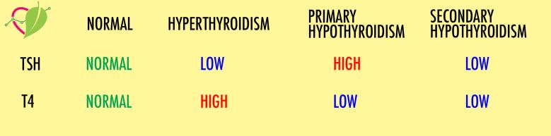 hyperthyroidism hypothyroidism tsh t4