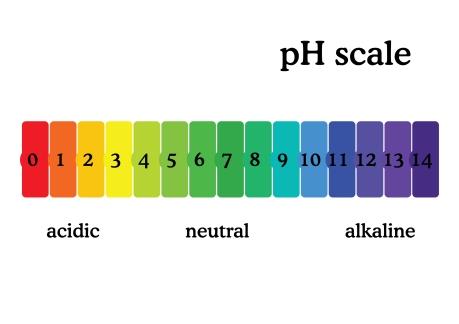 Urine PH scale reference range normal healthmatters.io