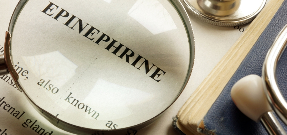 adrenaline healthmatters epinephrine high low meaning