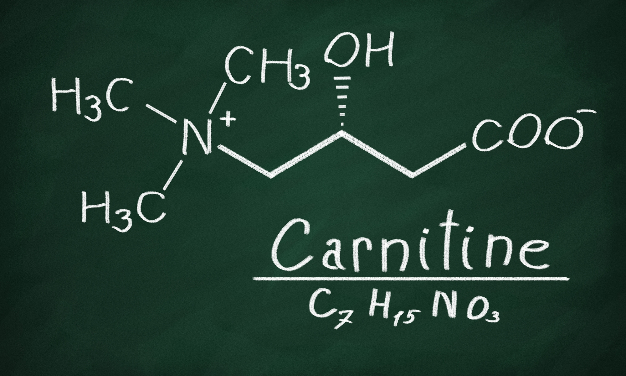 Adipate meaning high low reference ranges Carnitine