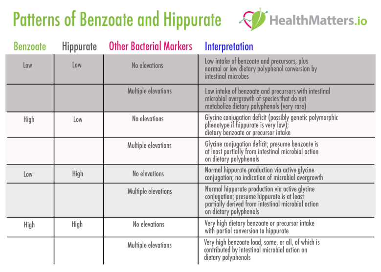 Benzoate Hippurate Interpretation high low meaning reference ranges