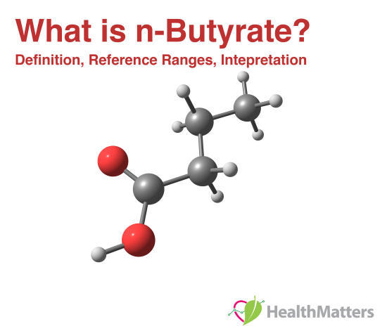 what is n-butyrate? reference ranges normal low high meaning