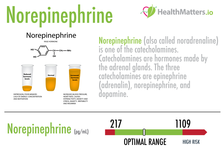 Norepinephrine scorecard high low meaning range reference