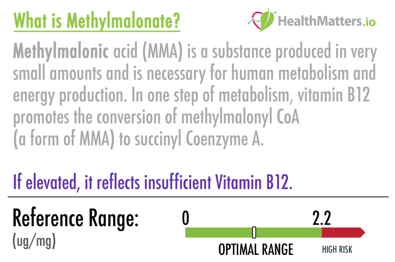 methylmalonate dutch test results high low meaning b12 vitamin treatment