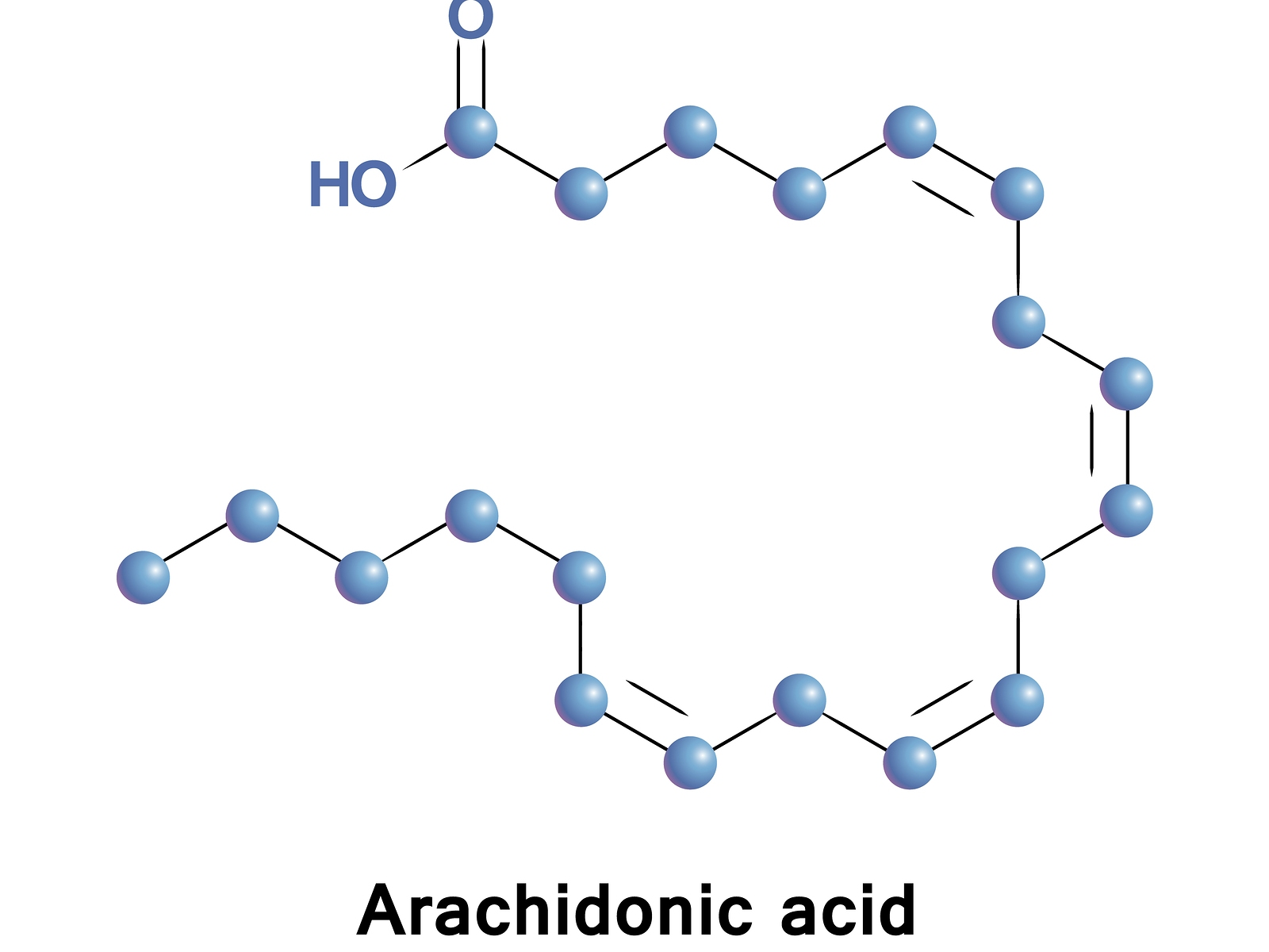 Arachidonic acid healthmatters.io meaning high low treatment animal products vegan diet