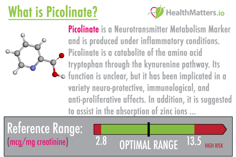 picolinate piclinic acid high low meaning treatment neurotransmitter genova diagnostics