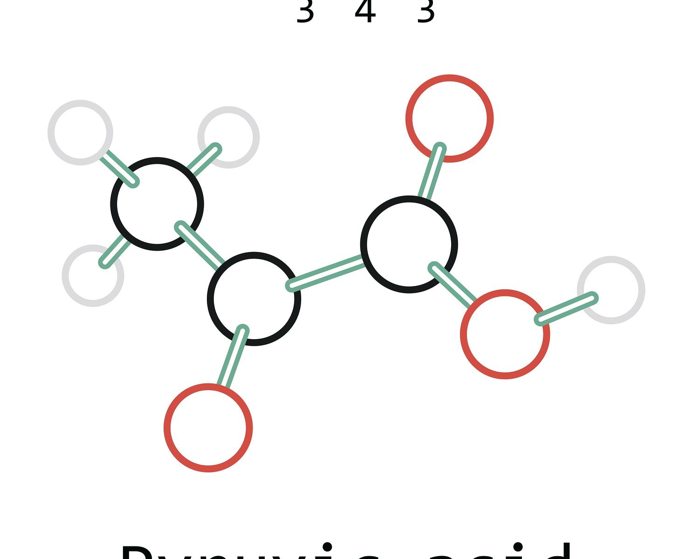 pyruvate pyruvic acid genova test meaning high low treatment