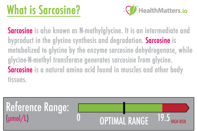 what is sarcosine genova test results meaning interpretation b2 amino acids glycine metabolite high low