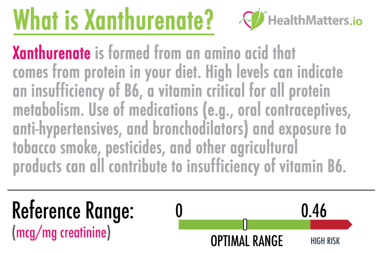 Xanthurenate genova dutch meaning high low vitamin b6 treatment