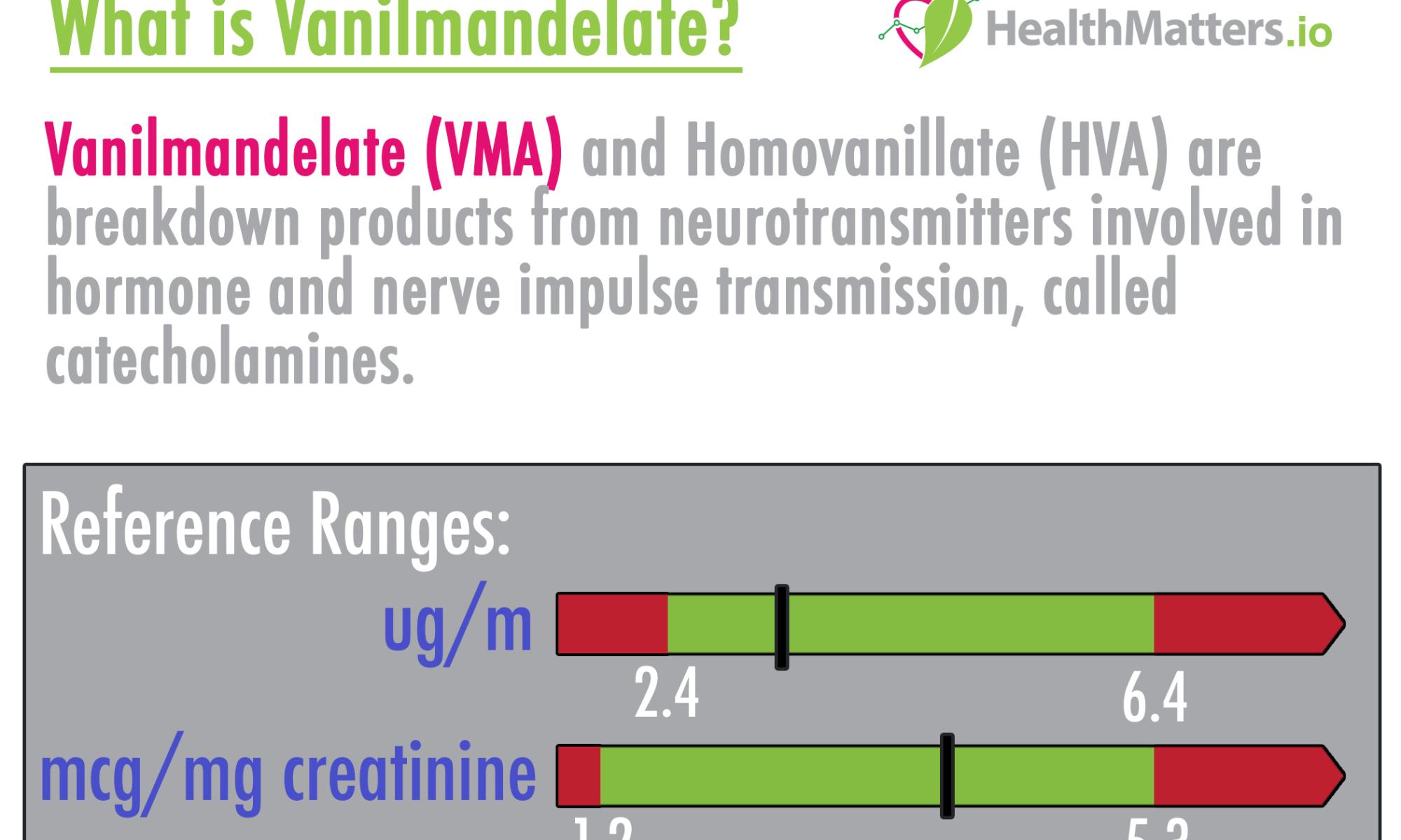 Vanilmandelate high low meaning VMA HVA homovanillate test results interpretation genova dutch pdf