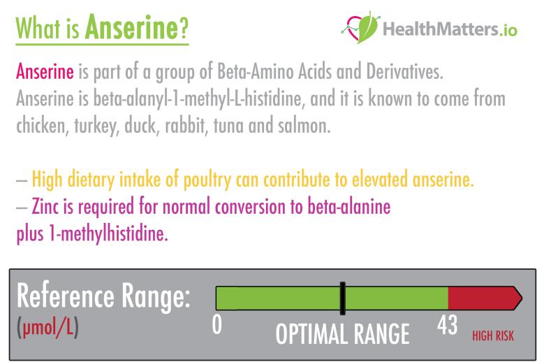 anserine high low meaning treatment interpretation healthmattes genova
