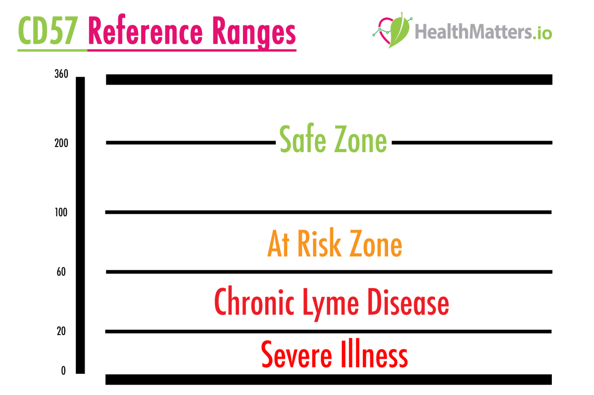 What are Lyme Disease markers? CD57 Lab results explained