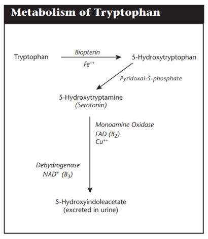 tryptophan high low meaning treatment symptoms interpretation lab results
