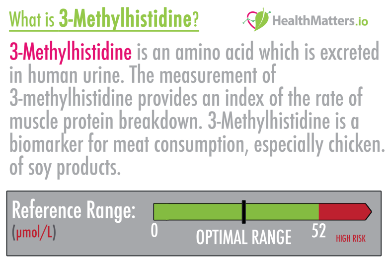 3-Methylhistidine high low meaning symptoms treatment interpretation genova lab test results