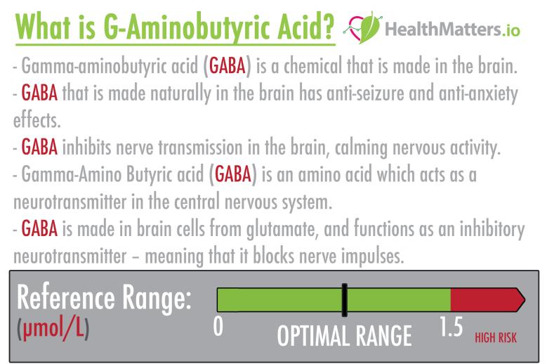 G-Aminobutyric Acid GABA high low meaning treatment symptoms interpretation