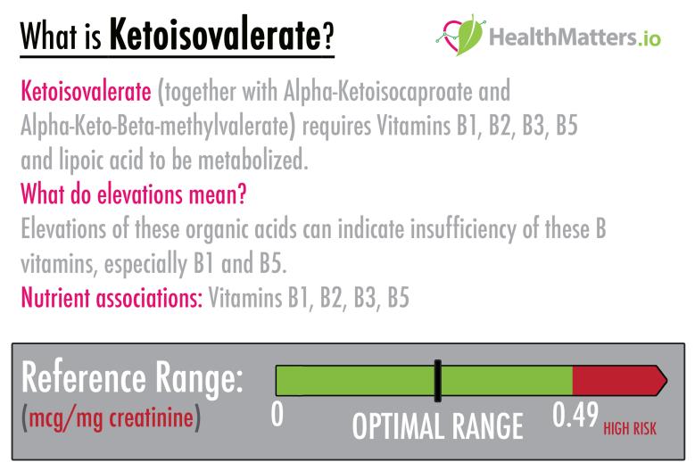 ketoisovalerate high vitamin b alpha treatment meaning interpretation genova gdx lab results healthmatters