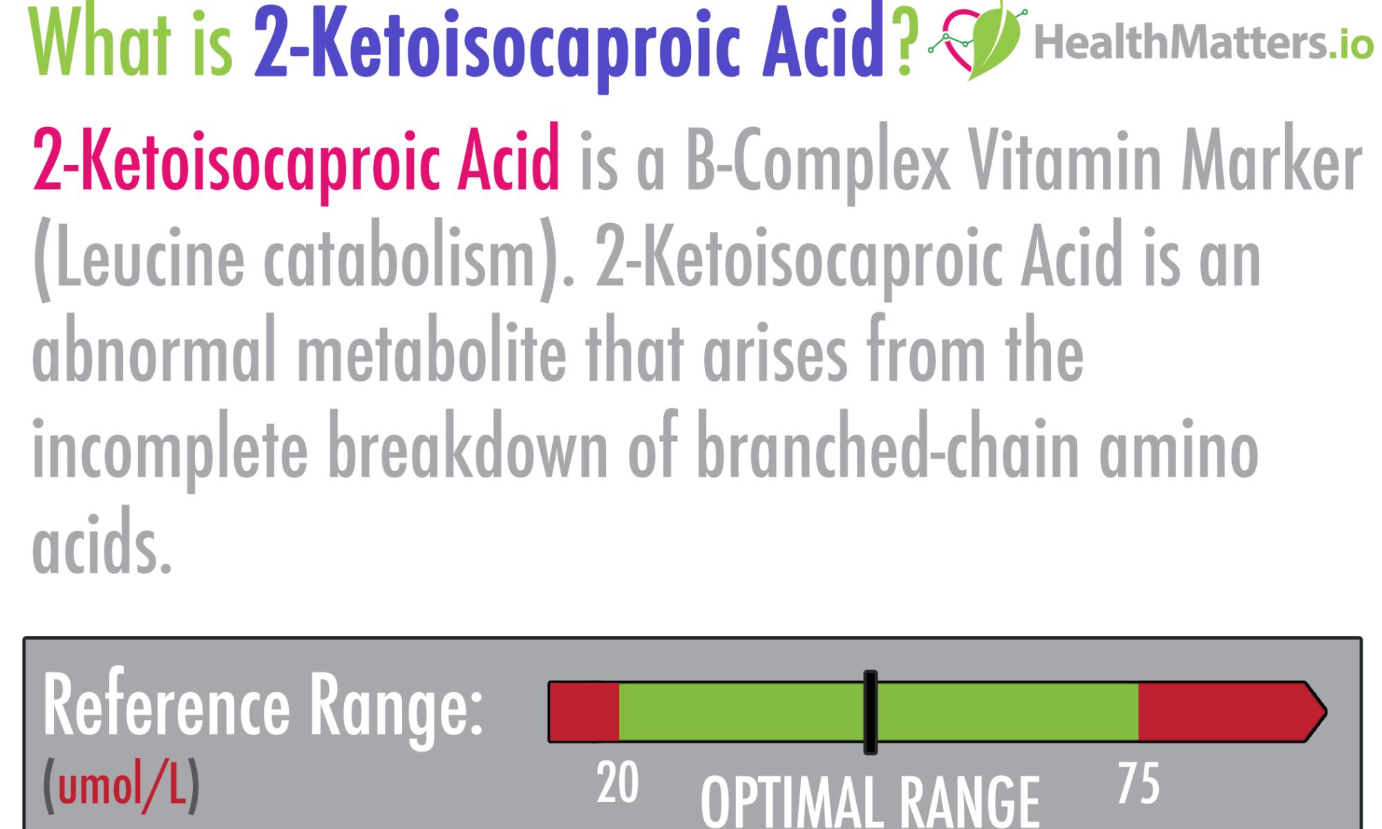 2-Ketoisocaproic Acid high low meaning treatment lab results organic acids gdx genova pdf healthmatters.io