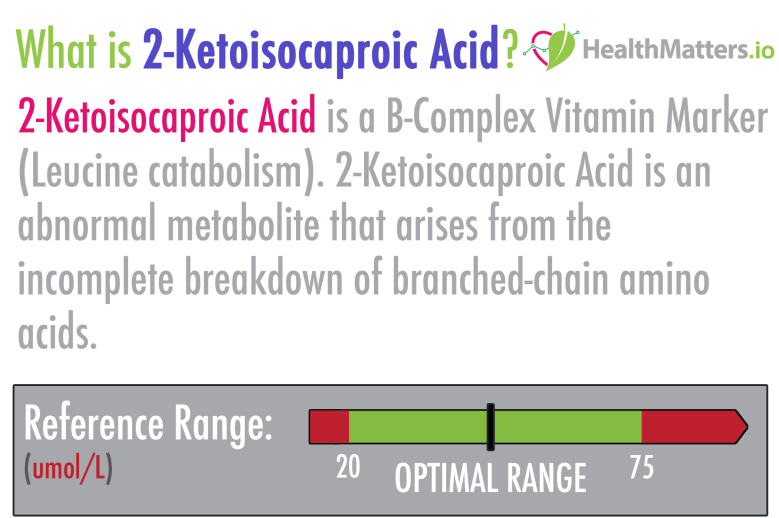 2-Ketoisocaproic Acid high low meaning treatment lab results organic acids gdx genova pdf healthmatters.io