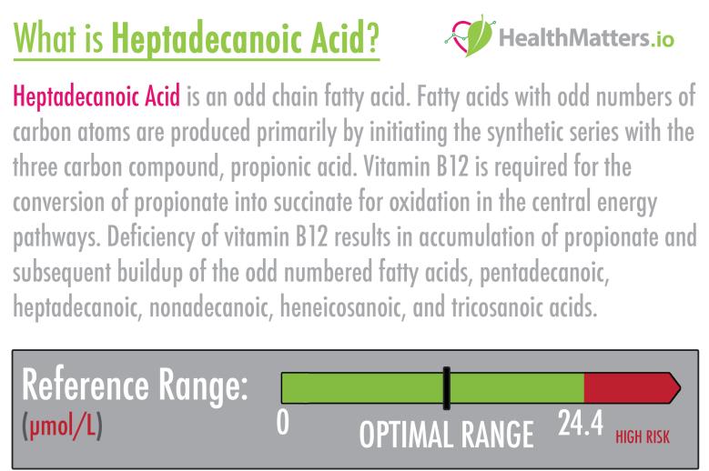 Heptadecanoic acid high meaning treatment b12 vegan gdx genova intgerpretation interpretive functional medicine