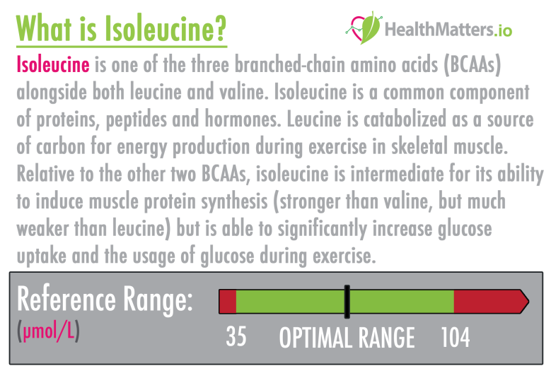 Isoleucine high low meaning treatment interpretive interpretation lab results explained protein bcaa amino acids high protein