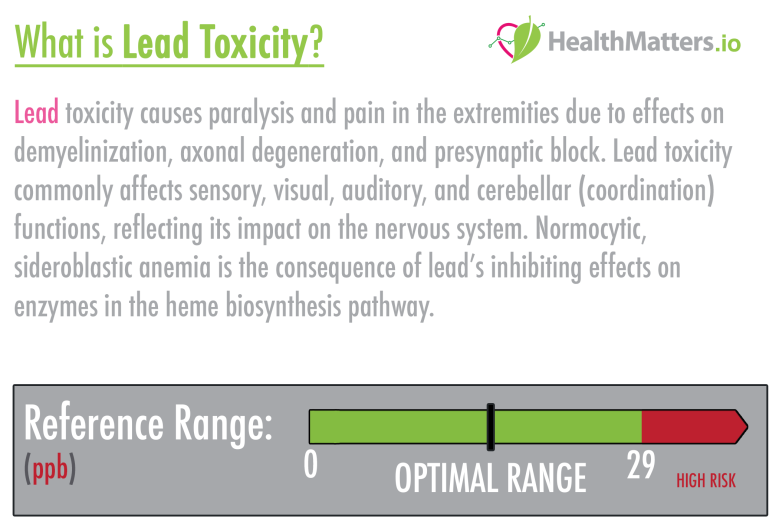 Lead toxicity high low meaning treatment symptoms prevention genova plasma urine hair