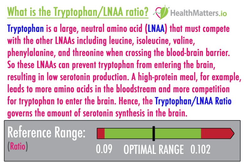 Tryptophan/LNAA high low meaning diet protein vegan serotonin treatment interpretive