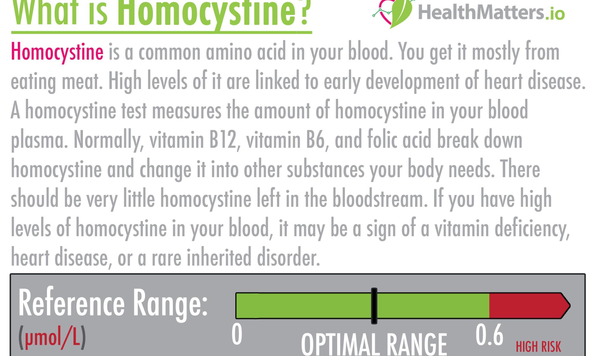 Homocystine high levels meaning treatment vegan diet plantbased nutritionfacts.org plasma interpretation pdf interpretive