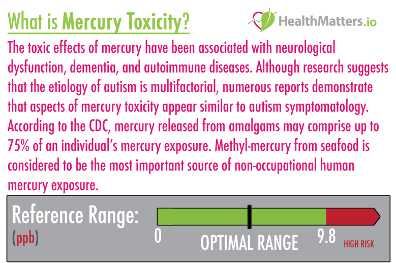 mercury genova toxicity high meaning treatment symptoms