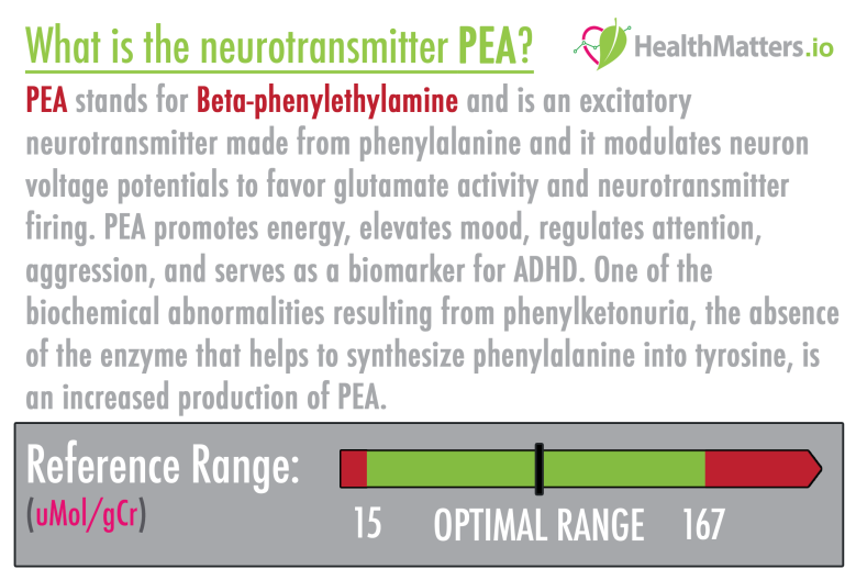 PEA Neurotransmitter Beta-phenylethylamine high low meaning treatment symptoms interpretive