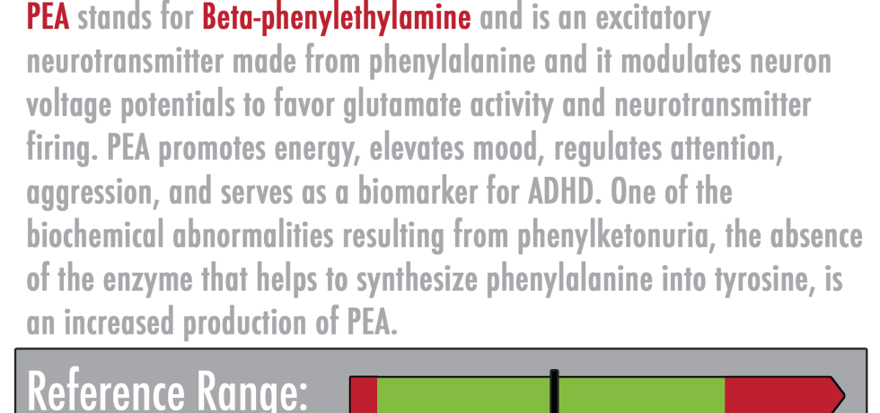 PEA Neurotransmitter Beta-phenylethylamine high low meaning treatment symptoms interpretive