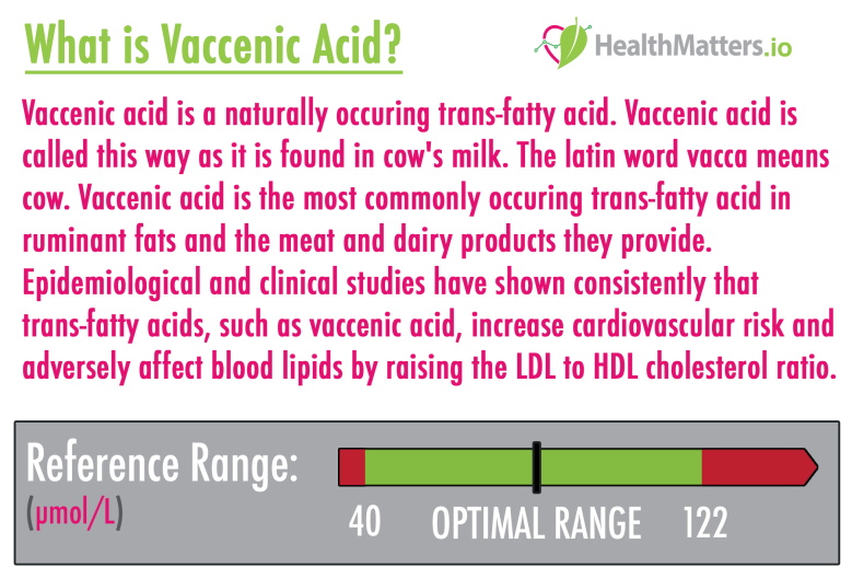 vaccenic acid high low meaning treatment milk dairy ldl hdl cholesterol