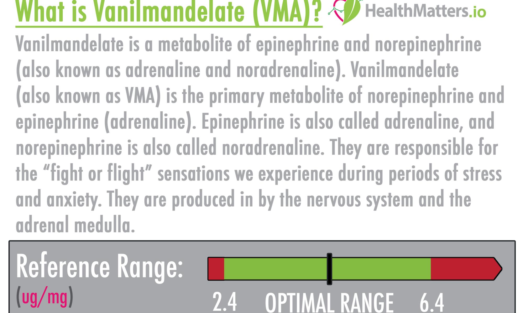 vanilmandelate high low meaning hva vma metabolite epinephrine norepinephrine adrenaline noradrenaline dutch dried urine functional