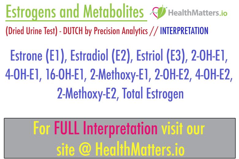 estrogens metabolites estrone estradiol estril 2-oh-e1 2-methoy-e1